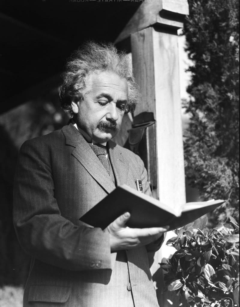 albert einstein the wilmington bookshelf albert einstein reading